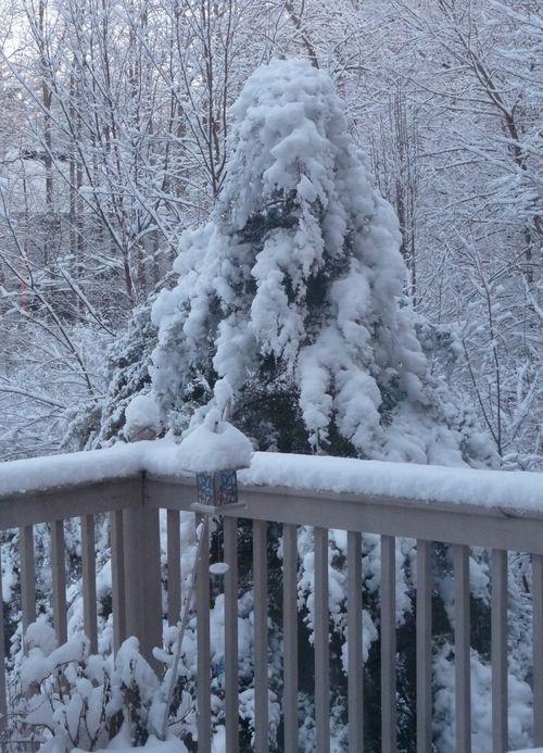Winterscene4