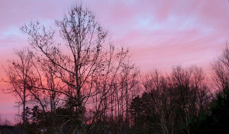 Georgia sunrise 2