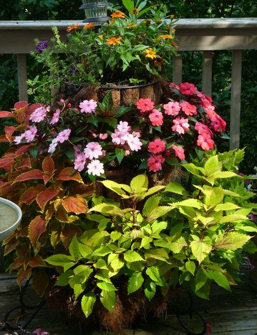 Three tiered planter